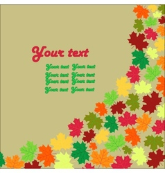 autumn maple leaves background card vector image