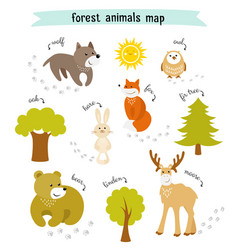 forest animals map with trees and footprints vector image