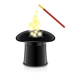 object magic wand and hat vector image