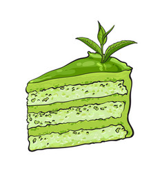 Hand drawn piece of matcha green tea layered cake vector
