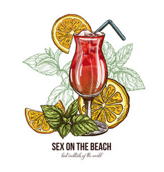 Sex on the beach cocktail with mint and orange vector