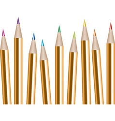 Vector bunch of colored pencils vector