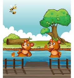A bear pointing at the bee vector image vector image