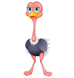 Ostrich cartoon vector image vector image