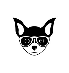 portrait of chihuahua dog in glasses vector image
