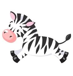 Little zebra vector