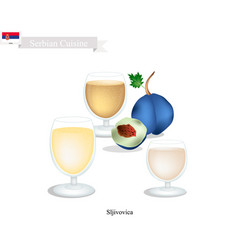 Sljivovica or plum brandy popular beverage in ser vector