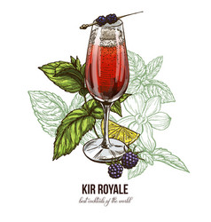 Kir royale cocktail with blackberries vector