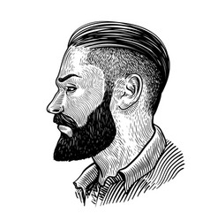 Hand drawn portrait of bearded man in profile vector