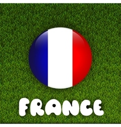 Flag of France on green grass field vector image vector image