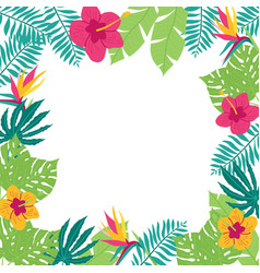 hand drawn tropic frame vector image