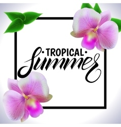 Tropical summer vector image