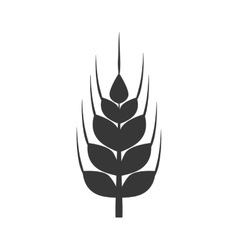 Wheat ears icon Grain design graphic vector image vector image