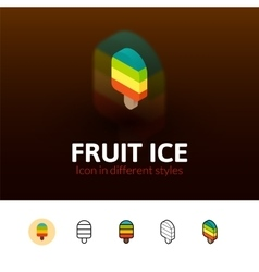 Fruit ice icon in different style vector