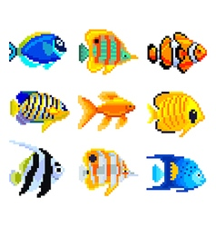 Pixel exotic fish for games icons set vector image