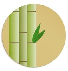 sugar cane vector image vector image