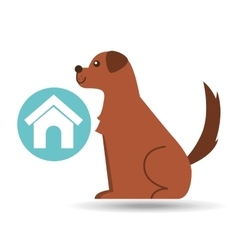 veterinary clinic concept house dog vector image vector image