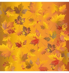 golden leafs vector image