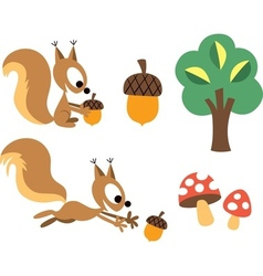 Squirrel acorn design elements vector