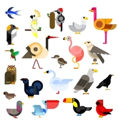 Wild aquatic tropical and urban birds flat icons vector