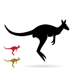 image of an kangaroo vector image