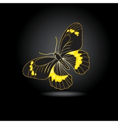 Beautiful fairy gold butterfly with shadow vector image vector image