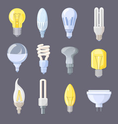 collection of light bulbs on vector image