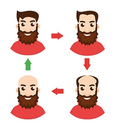 Stages of hair loss vector