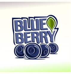 Blueberry still life vector