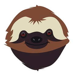 Sloth muzzle vector image