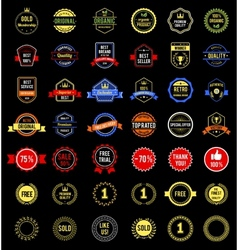 various badges vector image