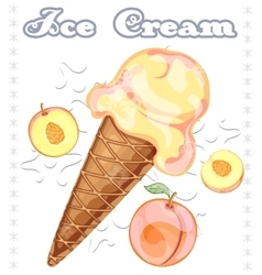Peach ice cream vector