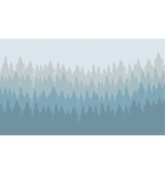 Wild coniferous forest vector