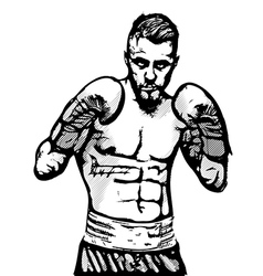boxer portrait vector image vector image