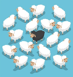 Isometric black sheep in the flock vector