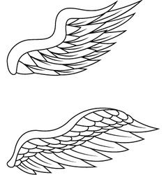 wings pack vector image