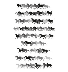 Set of horses silhouettes in black and grey vector
