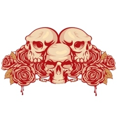 human skulls and rose vector image