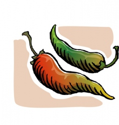 Chilies vector