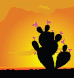 Cactus black with pink flower vector