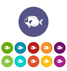 Surgeon fish set icons vector