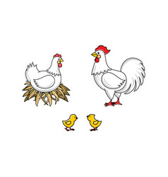 flat hand drawn rooster chicken set vector image
