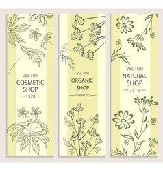 Floral decorative botanical banner vector image