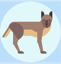 Hyena zoo young crocuta portrait character vector