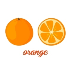 Orange fruits poster in cartoon style depicting vector image vector image