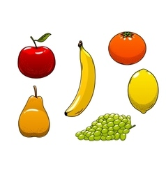 Fresh juicy and ripe isolated fruits vector image vector image