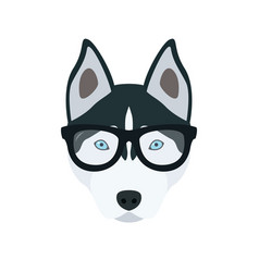 husky in glasses cute dog vector image