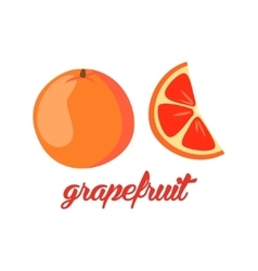 Grapefruit fruits poster in cartoon style vector