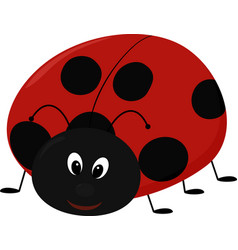 cartoon lady bug vector image vector image
