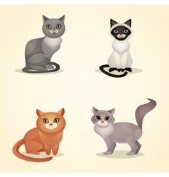 Cat set isolated vector image vector image